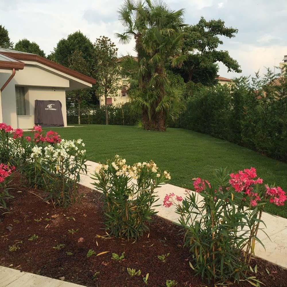 Progettazzione e realizzazione giardini e parchi a padova for Progettazioni giardini